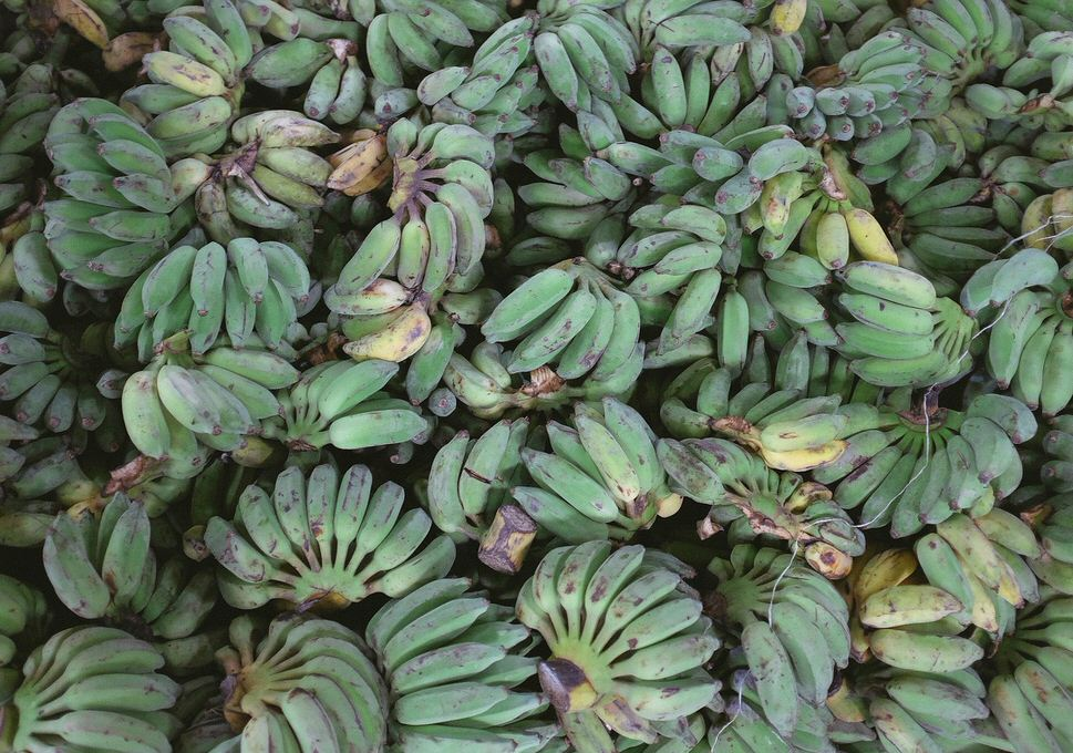 plantains-690695_1280